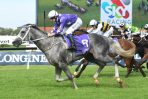 Outside barrier ok for D'Argento in 2018 Ladbrokes Stakes