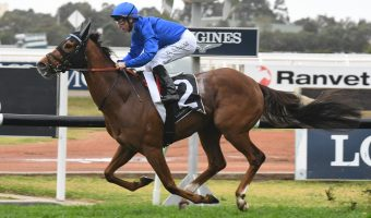 2020 Aurie's Star Handicap Results: Home Of The Brave Too Good