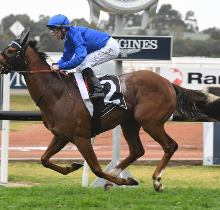 Land Of Plenty the pick of Weir's 3 Sir Rupert Clarke Stakes runners