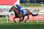 Miss Fabulass Firm Flight Stakes Favourite Following Tea Rose Stakes Win
