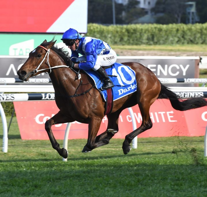 Magic Millions Cup Hopefuls Run in 2019 Lough Neagh Stakes