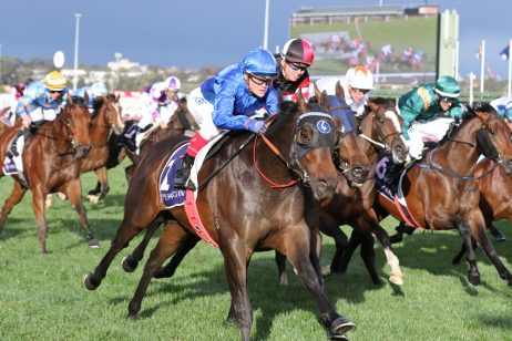 Kingsford Smith Cup 2019 Odds & Field Update: Home of the Brave Scratched