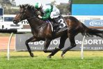 2018 Gloaming Stakes: Thinkin' Big? Think Spring Champion Favourite