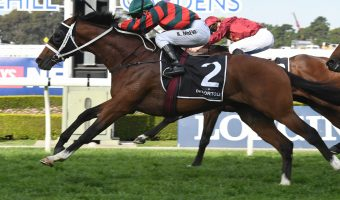 2018 Golden Rose Stakes Results: The Autumn Sun Wins
