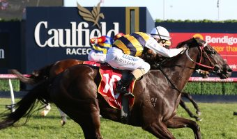 Night's Watch Punches Caulfield Cup Ticket With Naturalism Win