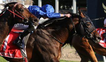 Jungle Cat Claws Sir Rupert Clarke Stakes Win