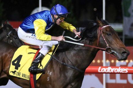 2019 Sunshine Coast Guineas Odds: Baccarat Baby Backed To Win