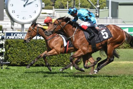 Star Fall Could Bring Star Haul for Ciaron Maher