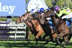 Oohood can break the hoodoo in the 2018 Caulfield Guineas