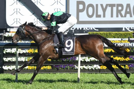 Carbine Club Stakes the Target for Roman Consul Winner Sesar