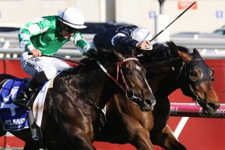 Homesman Could Be Melbourne Cup Bound With Caulfield Stakes Win