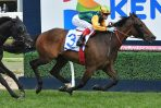 Ball of Muscle a Ball of Speed in Schillaci Stakes Win