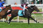 Toorak Handicap: Land of Plenty Caps Big Day for Darren Weir