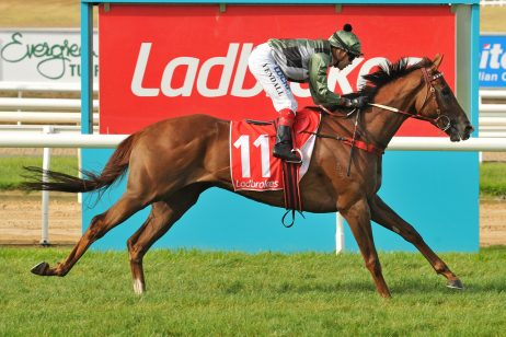 Kings Will Dream of Caulfield Cup Favourtism After Perfect Barrier Draw