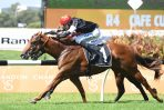 2018 Blue Sapphire Stakes: All Too Easy for Written By