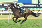 Early Spell for Waller Four-Year Old Unforgotten