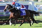 Caulfield Cup: Track Downgrade Should Suit Youngstar Nicely