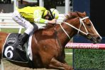 2018 Caulfield Sprint: Eduardo Claims Group Two Glory