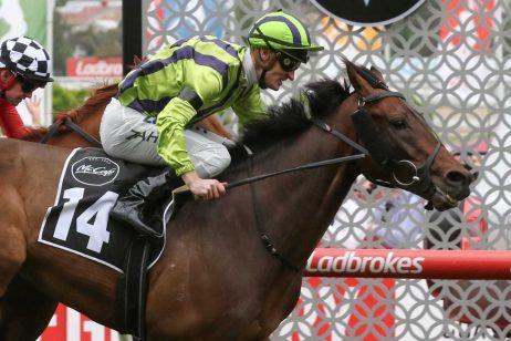 Melbourne Cup: Wet Track A Problem For Ventura Storm
