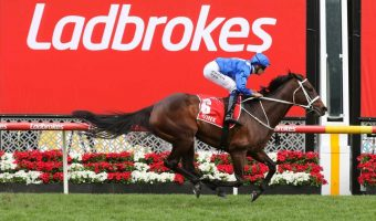Star Of Michelin Guides 2020 Winx Guineas Field & Betting