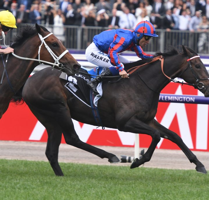 2019 Geelong Cup Field & Odds: Melbourne Cup Bound Prince Of Arran Favourite