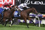 Field of 11 for 2019 Black Caviar Lightning