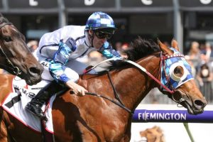 Kenedna Salutes for Punters in 2019 P.J. O'Shea Stakes Results