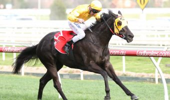Visor on For Savanna Amour in 2018 Kevin Heffernan Stakes