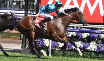 Darren Weir Already Has Eyes Set on $5 Million All-Star Mile