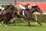 Galaxy Star to shine for locals in 2018 Railway Stakes field
