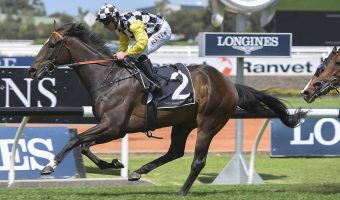 Sky Boy draws barrier 9 in 2018 Villiers Stakes