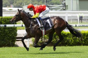 Stradbroke Talks for Gold Coast Guineas Winner Hightail