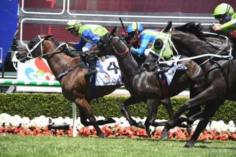 Tumultuous Goes Back to Back in Magic Millions Trophy