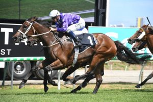 Invincibella Goes Back-to-Back in 2019 Dane Ripper Stakes