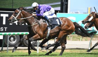 Magic Millions: Invincibella a Class Above in Fillies & Mares for Second Straight Year