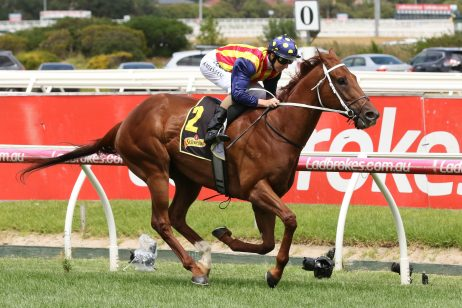Nature Strip the Only Oakleigh Plate Single-Digit Favourite