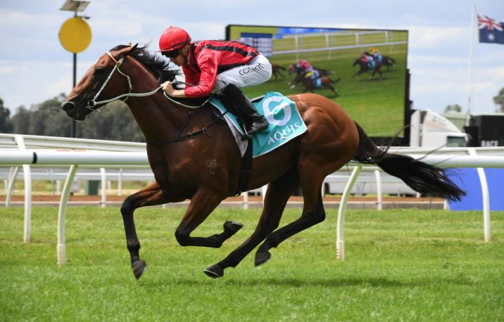 Gem Song Sparkles on Path to Randwick Guineas