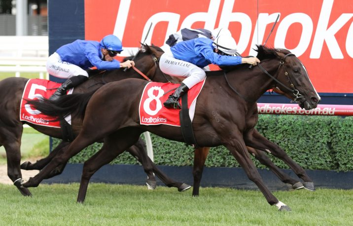 Ladbrokes Blue Diamond Stakes: Lyre, Brooklyn Hustle Firm Following Strong Prelude Run