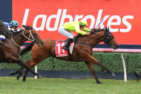 2019 Stradbroke Handicap Odds Update: Tyzone Firms After Securing Start