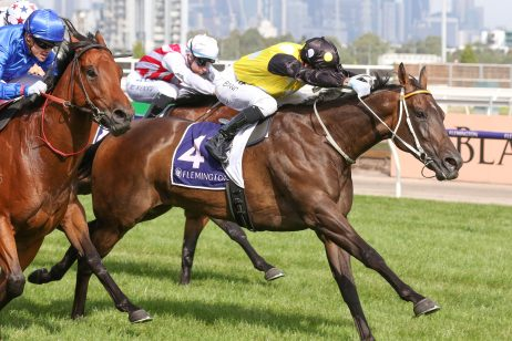 Aethero Dominates 2019 Hong Kong Sprint Betting