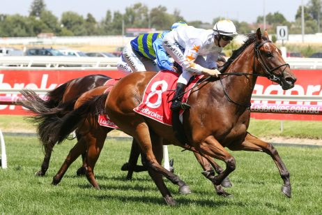 Loving Gaby remains favourite despite wide barrier in 2019 Ladbrokes Blue Diamond Stakes