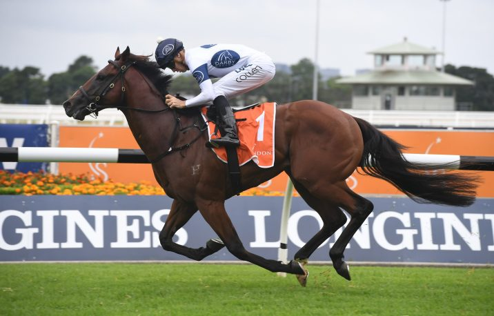 It's Gary Portelli's Time to Reign in the Golden Slipper