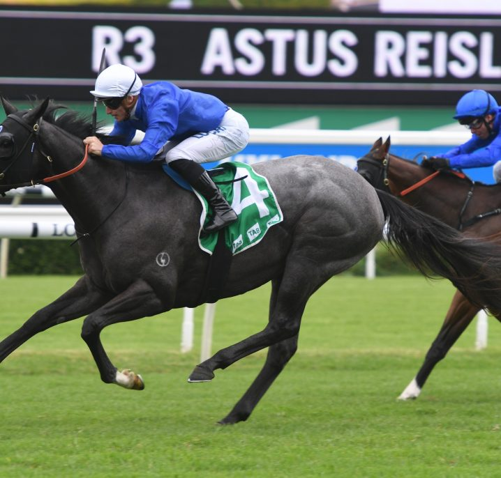 Silver Shadow Stakes 2019 Betting: Libertini Odds-On