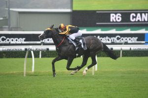 2019 Canterbury Stakes Results: Trapeze Artist Wins