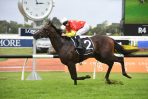 Cosmic Force has a tight grip on 2019 Golden Slipper betting