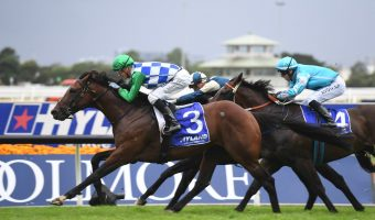 Fifty Stars Sets Sights on the Doncaster Mile