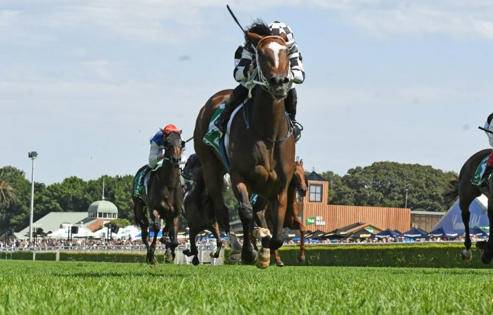 Aliferous Dashes Home Late to Claim the Adrian Knox