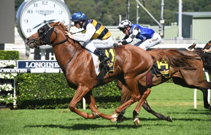 Sydney Cup Bound Gallic Chieftain Wins the Chairman's Quality