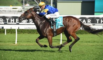 2019 The Everest Betting Update: Favourites Draw Good Gates