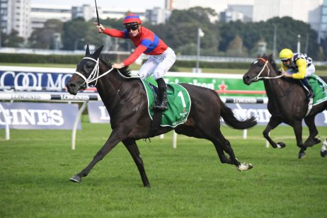 2020 Tancred Stakes Day: Rosehill Scratchings & Track Report